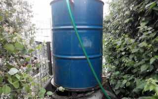 Как поливать огурцы (в теплице и в открытом грунте): сколько раз и как часто, сроки полива, какой водой лучше поливать?