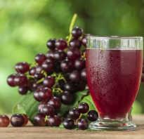 Сок из винограда: польза и вред употребления, как сделать в домашних условиях, видео
