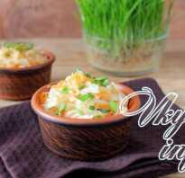 Квашеная капуста с тыквой: вкусные рецепты на зиму, правила хранения