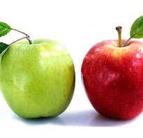 Какой сорт яблок самый полезный для человека, чем отличаются зелёные яблоки от красных