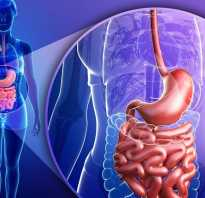 Сколько переваривается гречка в желудке человека: отварная и с молоком, что воздействует на время усвоения, у ребёнка и взрослых