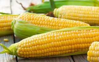 Как правильно хранить варёную кукурузу: можно ли хранить в воде или нет, сколько можно хранить в холодильнике
