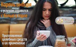 Польза корня имбиря для голосовых связок: чай для полоскания при фарингите и ларингите, рецепты