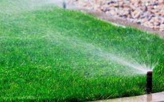 Автоматический полив газона: установка системы автоплива своими руками, оборудование и монтаж, как рассчитать полив травы, как сделать устройство