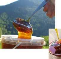 Таёжный мёд: полезные свойства и противопоказания, характеристика и состав, фото