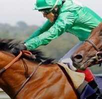 Скорость бега лошади (максимальная, средняя): с каретой, с наездником, на скачках