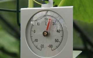 Какая температура должна быть в теплице: поддержание температуры в плёночной, неотапливаемой теплицах