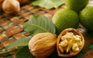 Можно ли и что будет, если съесть много грецких орехов, дневная норма и как правильно употреблять орехи