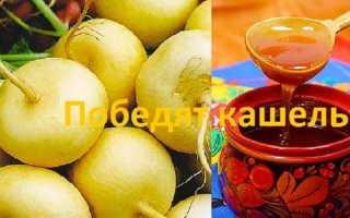 Репа с мёдом от кашля: рецепт приготовления, как правильно принимать