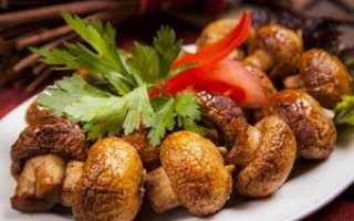 Вешенки на мангале, костре, гриле: как готовить, рецепты с фото