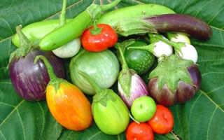 Почему баклажаны зеленеют: что делать и можно ли их есть?