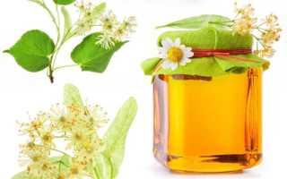 Какой мёд лучше — липовый или цветочный? Как отличить, лучшие сорта, противопоказания к применению, правила хранения