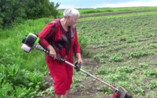 Как косить ботву картофеля триммером: особенности процесса, как подготовить оборудование