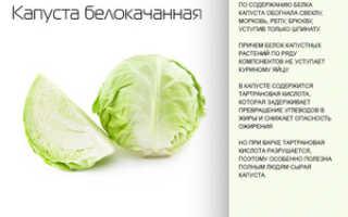 Маринованная капуста: польза и вред, химический состав и калорийность, нормы употребления