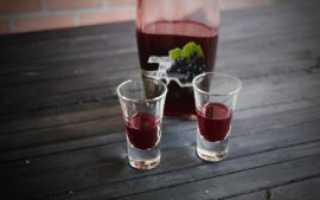 Настойка на зелёных листьях чёрной смородины: рецепт на самогоне и водке