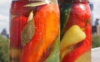 Как засолить горький перец (холодным способом под капроновой крышкой, без стерилизации): рецепты с пошаговым приготовлением