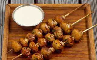 Грибы шампиньоны: на гриле, в духовке, рецепты приготовления и маринада, пошаговые инструкции с фото