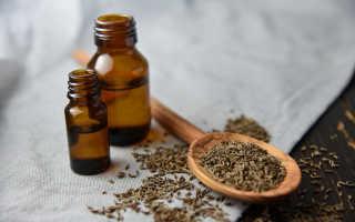 Полезные свойства и противопоказания тмина для организма человека, особенности применения, рецепты, фото