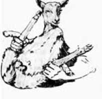 Как кастрировать баранов в домашних условиях: ягнят, старых баранов, резиновыми кольцами, щипцами, пошаговая инструкция, отзывы о методах кастрации