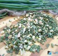 Как высушить зелёный лук в домашних условиях: химический состав и калорийность сушёного лука