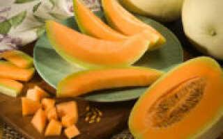 Как сделать цукаты из дыни в домашних условиях: простой рецепт с фото пошагово в электросушилке