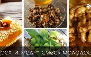 Грецкие орехи с мёдом для женщин: польза и вред, рецепты