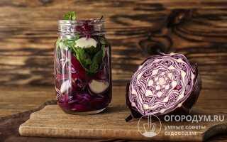 Как мариновать краснокочанную капусту: со свёклой, перцем, лучшие рецепты