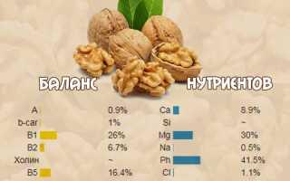 Как и с чем правильно есть грецкие орехи с пользой для организма, противопоказания к употреблению
