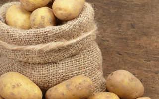 Хранение картофеля на балконе: оптимальная температура, выбор ящика и другие особенности хранения