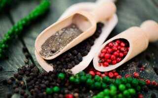 Перец душистый: особенности выращивания и ухода в домашних условиях, фото