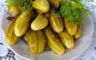 Огурцы, маринованные с яблочным уксусом: самые вкусные рецепты маринования, пошаговое приготовление