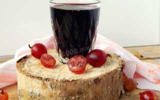 Настойка из крыжовника на водке: лучшие рецепты, пошаговое приготовление