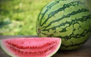Сколько можно есть арбуза в день: нормы употребления, что будет если переесть, как выбирать продукт