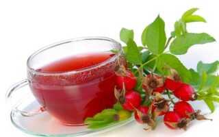 Шиповник: полезные свойства и противопоказания для мужчин, как заваривать чай и отвар, влияние на потенцию