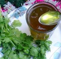 Настой петрушки: польза и вред, лечебные свойства, как приготовить и как принимать
