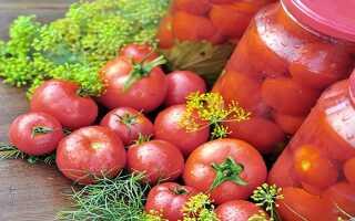 Помидоры розовые на зиму: лучшие рецепты консервированных и маринованных томатов, пошаговое приготовление, фото