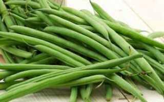 Стручковая фасоль: выращивание и уход, как растёт, фото