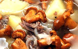 Рецепты блюд из сушёных лисичек: как готовить, жарка