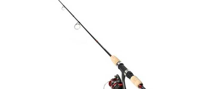 Ловля карася на спиннинг: как ловить с берега, монтаж и оснастка для начинающих, как собрать и снарядить для рыбалки, можно ли поймать на спиннинг