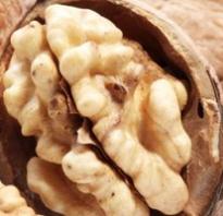 Грецкий орех: слабит или крепит, можно ли есть при диарее и от поноса, могут ли грецкие орехи вызвать запор