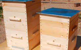 Типы ульев в пчеловодстве: как сделать своими руками, материалы, чертежи и размеры, видео