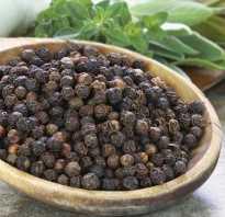 Чем душистый перец отличается от чёрного? Описание и особенности применения перца
