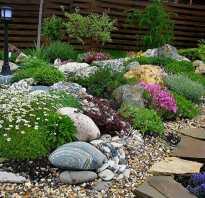 Альпийские горки в ландшафтном дизайне: как можно сделать своими руками, фото горки с водопадом, какие растения можно сажать, описание растений