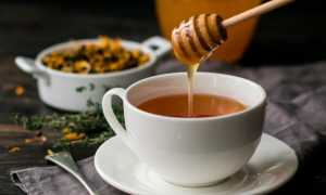 Мёд и кипяток: можно ли пить, польза и вред, особенности употребления