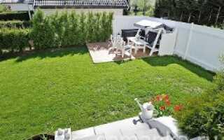 Газонная трава: через сколько дней всходит после посева, срок прорастания, при какой температуре прорастает