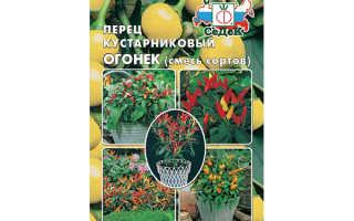 Перец Огонёк на подоконнике: выращивание из семян, посадка и уход, формирование