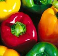 Перец Айвенго: характеристика и описание сорта, фото, урожайность, выращивание и уход