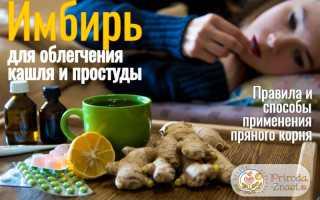 Имбирь как лекарство от сухого и мокрого кашля: рецепты народной медицины