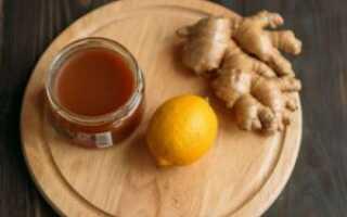 Чем полезен имбирь с лимоном и мёдом: пропорции, способы применения, лечение, противопоказания