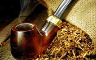 Табак Вирджиния 202: выращивание и уход в домашних условиях, сбор и дальнейшая обработка